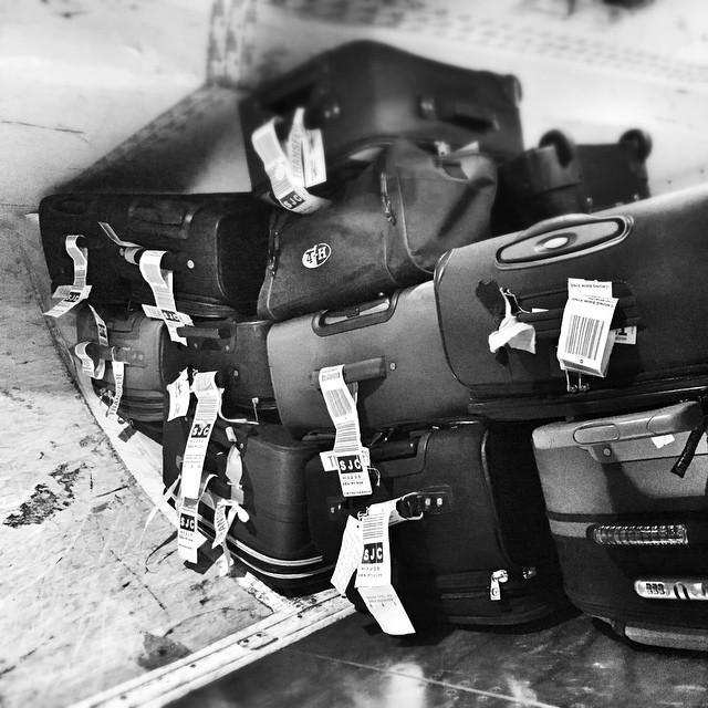 Bags in the bin